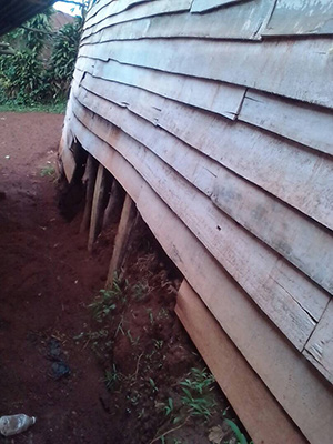 Earthquake damage to school in South Kivu